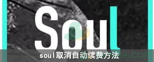 soul取消自动续费方法