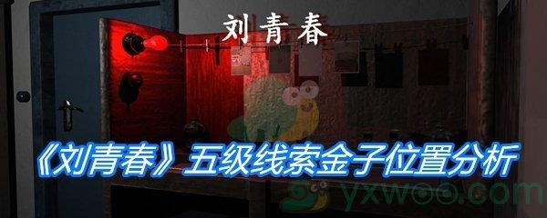 《孙美琪疑案:刘青春》五级线索金子位置分析