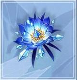 《原神》冰风迷途的勇士属性介绍