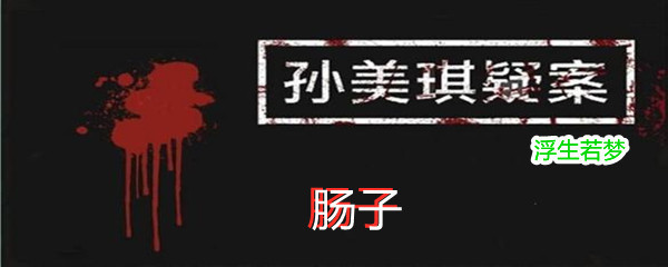 《孙美琪疑案:浮生若梦》五级线索肠子