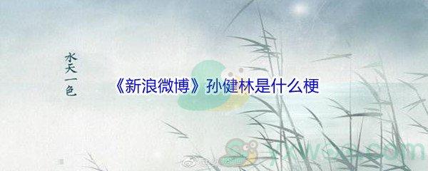 《新浪微博》孙健林是什么梗