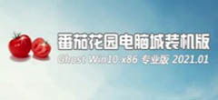 番茄花园Ghost windows10 x86精选专业版系统下载